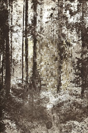 Elise Wehle artwork: Forestwithsmokehg by Elise Wehle