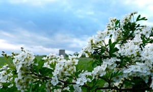 May blossom on Windmill Hill.