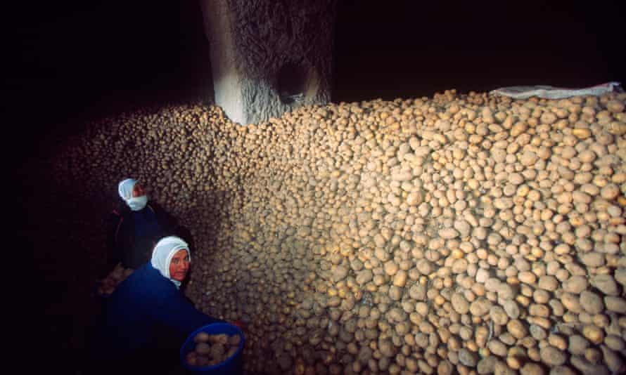 Potatoes stored in Cappadocia caves
