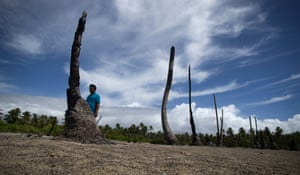 Local priest Father Martin Everi walks through what's left of the taro and banana fields