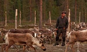 Aatsinki reindeer herder Lapland