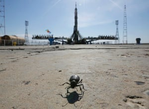 An insect crosses the launchpad of Russia's Soyuz-FG booster rocket and space capsulea at Baikonur Cosmodrome, Kazakhstan.