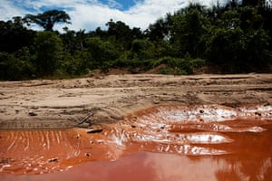 Illegal gold mining: Land affected by illegal gold mining