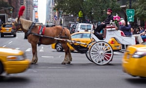 Central Park carriage ride in New York