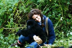 Scientists: Gorillas In The Mist