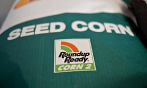 A Roundup Ready Corn 2 logo appears on a bag of Monsanto seed corn. Food containing GM ingredients will have to be labelled in Vermont under a new law