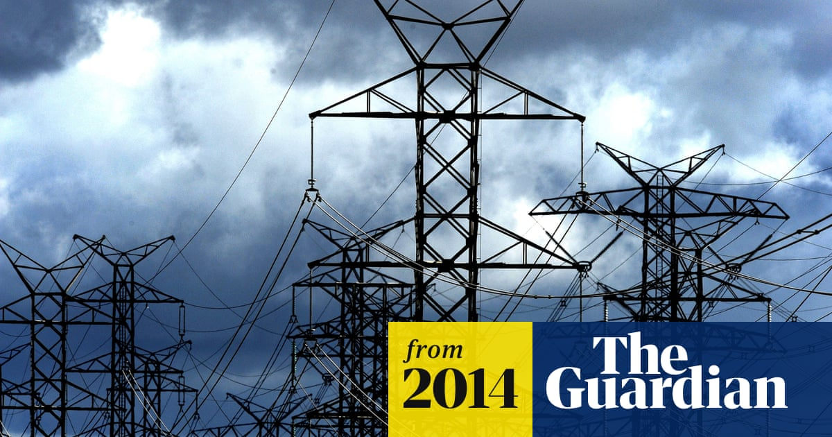 NSW government approves electricity poles and wires sell-off