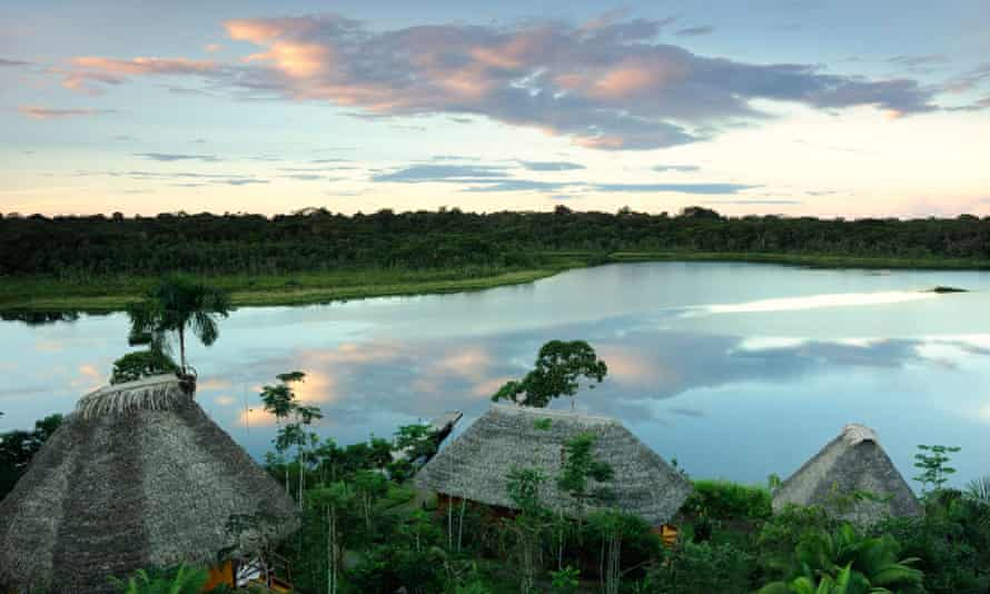 The Yasuni National Park in Ecuador where oil firms are discussing building a road to access deposits in the ITT fields.