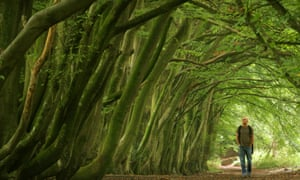 A man walks along a tree lined path on the South Downs near Chichester in West Sussex in southern England