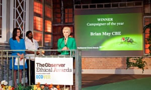 Anita Dobson accepts Campaigner of the Year for her husband Brian May, Observer Ethical Awards 2014