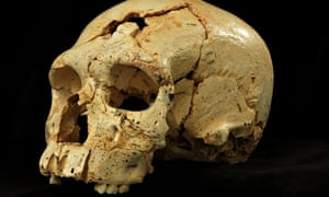 A Neanderthal skull from the Sima de los Huesos cave in Spain
