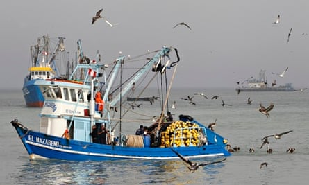 Fishing boats at sea