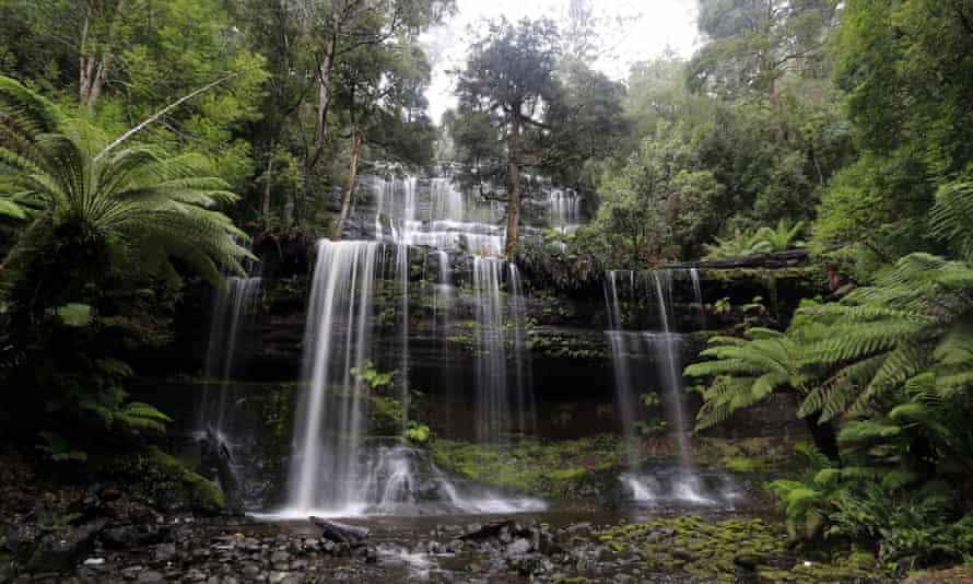 Russell Falls, a waterfall deep in Mt Field National Park, Tasmania, Australia.