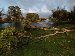 A tree branch lies felled after wild weather in Melbourne on Tuesday