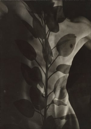 Edmund Teske, American, 1911-1996, Nude, Davenport, Iowa, Composite with Leaves, negative, 1941 and 1964; print, 1960s. Gelatin silver composite print