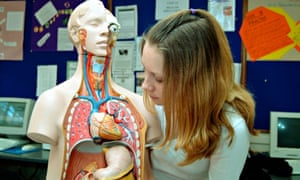 How to teach vital organs teacher network the guardian explore the importance of our vital organs and how they keep us fit and healthy photograph alamy ccuart Image collections