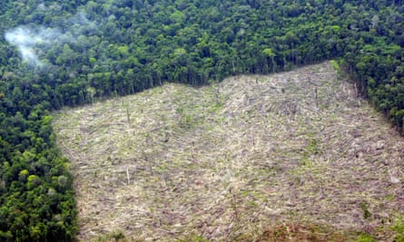 An aerial picture shows deforestated land in Indragiri Hulu, Riau province, Indonesia