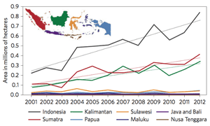 Annual primary forest cover loss, 2000–2012, for Indonesia