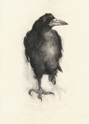 2014 David Shepherd Wildlife Foundation (DSWF) Wildlife Artist of the Year Wildlife in Monochrome - any wild animal or landscape drawn in tones of any one colour – sponsored by Gary Hodges  Category Winner: Rook by Suzie Dafforn (Maidstone)
