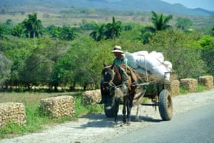 a man on a horse pulling a cart of hay and sacks