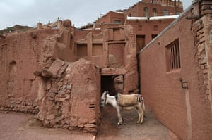Agencies Iran Moore: A donkey stands amongst traditional mud brick homes