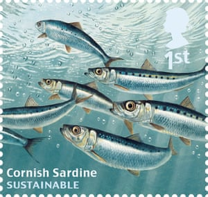 Undated handout photo issued by Royal Mail from their Sustainable Fish Special Stamps issue showing Cornish Sardine.