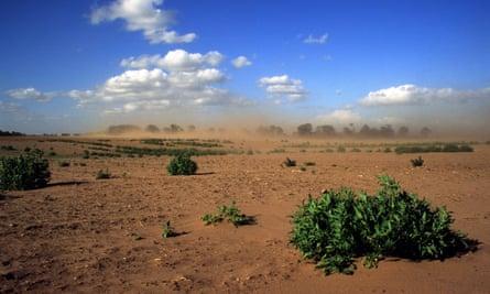 Effects of soil erosion on farmland in Shottisham near Woodbridge Suffolk, UK