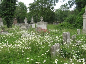 Tower Hamlets Cemetery Park covers 31 acres and is a designated Local Nature Reserve