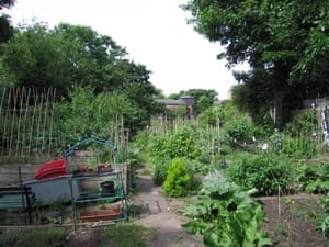 Walworth Allotment Association was founded in the 1970s is home to just 16 plots with a wildlife area and bee hives