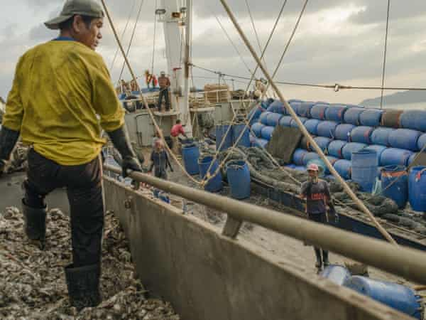 Thai 'trash fish' workers unload the catch at Songkhla port.