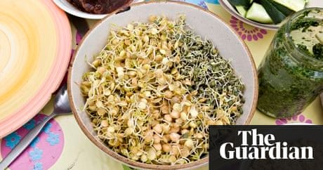 10 vegetarian and vegan blogs you need to know about life and 10 vegetarian and vegan blogs you need to know about life and style the guardian forumfinder Images
