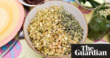10 vegetarian and vegan blogs you need to know about life and 10 vegetarian and vegan blogs you need to know about life and style the guardian forumfinder Choice Image