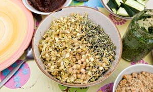 10 vegetarian and vegan blogs you need to know about life and beansprouts are healthy regulars on many vegetarian and vegan recipes photograph martin argles for the guardian forumfinder Images