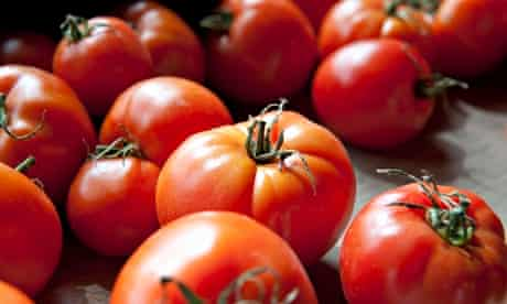 Tomato extract relieves damaged arteries, finds Cambridge study