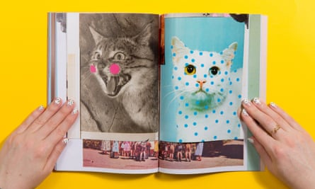 Fashionable cats: from Melbourne magazine Cat People