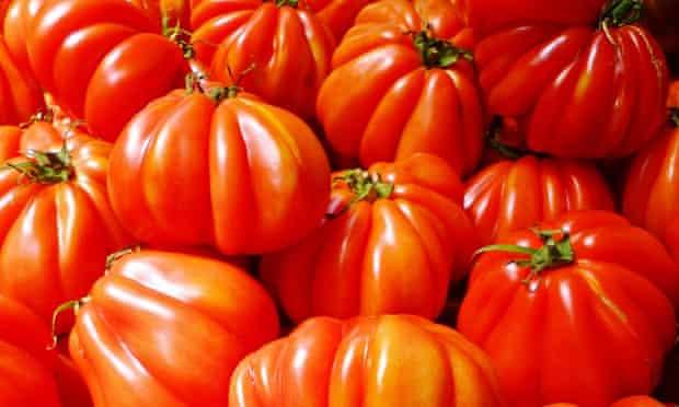 Live Better: Leftover tomato recipes