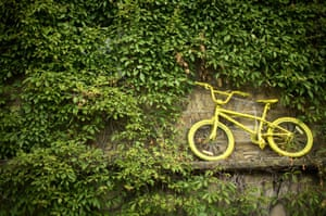 A yellow bicycle mingles amongst the ivy of a cottage on route two in Haworth