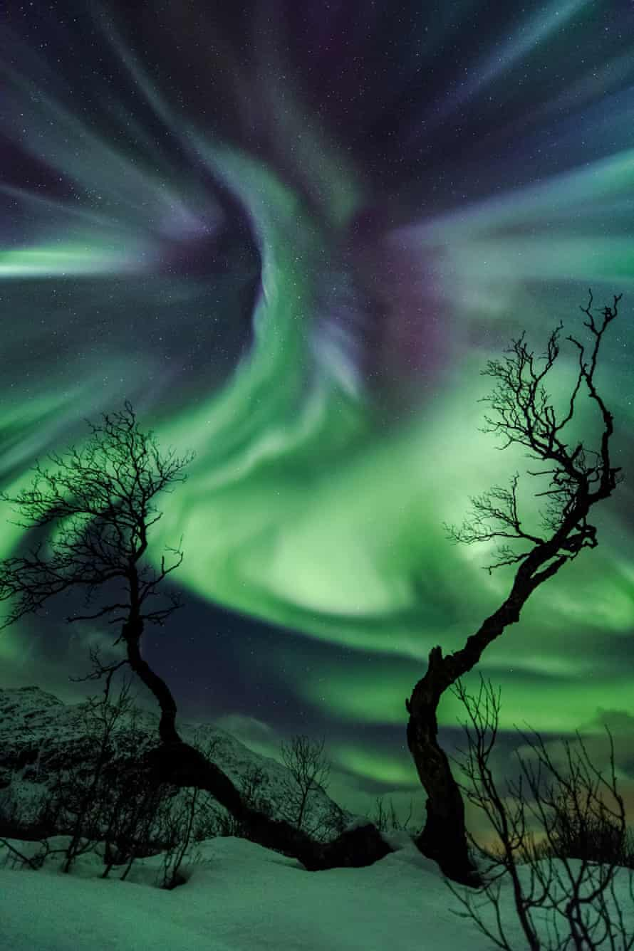 Astronomy Photographer of the Year 2014: Creature by Ole Christian Salomonsen (Norway)