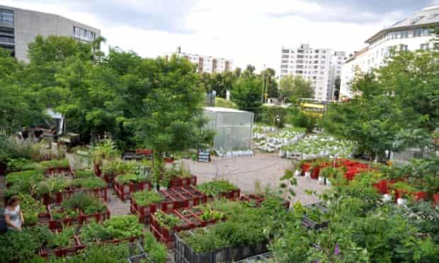 Prinzessinnengarten - urban farm in Berlin, Germany