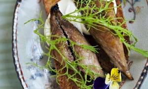 Warm, spiced mackerel toasts