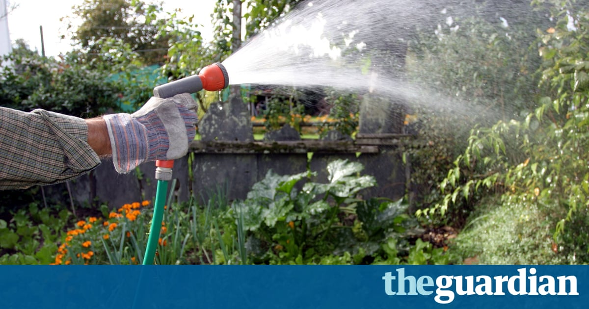 Six ways to save water in your garden life and style the guardian - Ways saving water watering garden ...