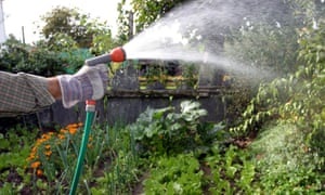 Live Better: save water in garden
