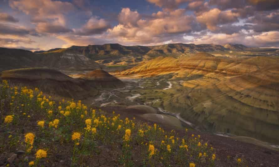 John Day Fossil Beds