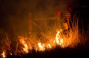 Burning fields in the dry season on the edge of the park by local communities threatens the indigenous plants and the fodder the animals in the park depend upon.