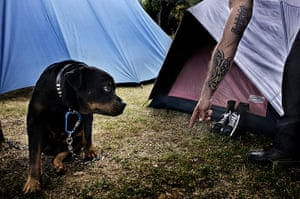 Weekend - Skinheads : dog on campsite with man pointing finger
