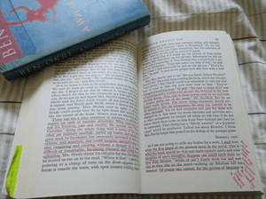 book annotations