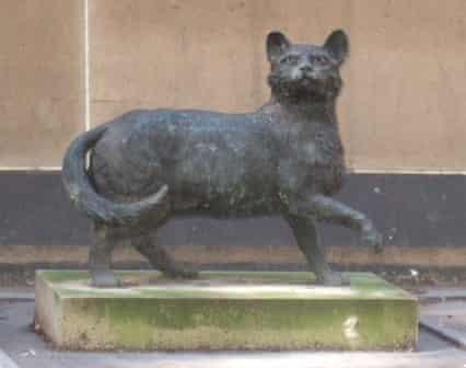 Statue of Trim the cat, Sydney