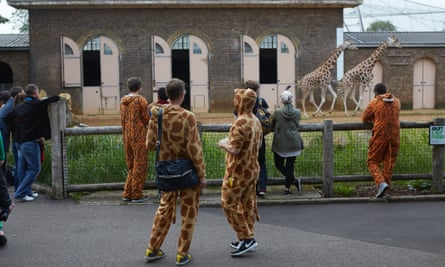 On Friday nights throughout the summer, London Zoo hosts