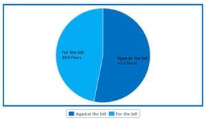 Pie chart of Lord's debate