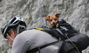 A cyclists with his dog in a backpack climbs the race route towards the finish line in Risoul prior to the arrival of the riders.